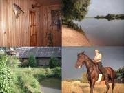 Сдам охотничий домик с банькой на сутки  г. ЖЛОБИН Тел. +375255463088